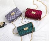 2017 de dames doen Handtas van de Zak van de Gelei van de Handtassen van het Silicone van pvc de Rubber in zakken