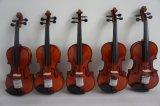 단단한 Handmade 주된 악기 바이올린