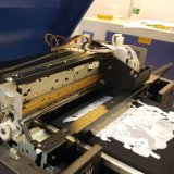 Stampante dello schermo di DTG LED per il modello di stampa di disegno 3D