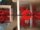 Hydraulisches Platten-Ventil API-6A