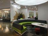 현대 작풍 우수한 직원 분할 워크 스테이션 사무실 책상 (PZ-0182)