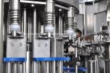 Automatischer Mangofrucht-Saft-Unterlegscheibe-Einfüllstutzen-Mützenmacher-Monobloc Maschine