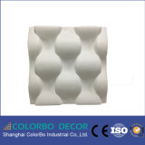 Écran antibruit décoratif de fibre de polyester du mur 3D