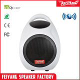 DJ colorés Temeisheng Feiyang/mini portable sans fil haut-parleur Bluetooth F905