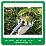최신 판매 정원 농업 공구 소형 수동 과일 피커