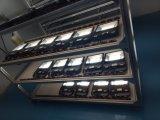 Meanwell 운전사 보장을%s 가진 큰 까만 가장 밝은 200W LED 투광램프 5 년