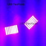 Lampe de polymérisation encre UV LED 395nm 100W Nouveau