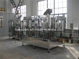 Completare la piccola linea di produzione dell'acqua di imbottigliamento della bottiglia