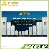 지능적인 붙박이 관제사를 가진 새로운 80W 밝은 LED 태양 에너지 가로등