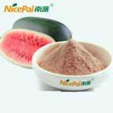 La polvere secca fresca del succo di frutta dell'anguria fa dall'anguria fresca