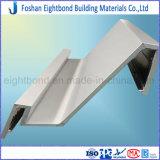 Comitati di alluminio personalizzati del favo del comitato di progetto