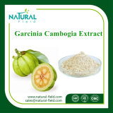 Garcinia Cambogia 추출 Hca /Hydroxycitric 산 50%, 60%