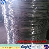 Menor preço e qualidade superior Electro arame galvanizado (XA-GW005)