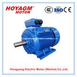 IEC, утвержденном CE 0.75-375квт низкое напряжение всеобщей IE2 эффективности электрический автомобильный комплект для переоборудования электродвигатель постоянного тока для промышленности