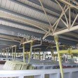 Edificio de marco de acero moderno del metal para el mercado