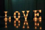 Le chapiteau de DEL marque avec des lettres la lumière décorative à la maison de lettres du signe DEL