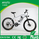 صاحب مصنع [1000و] [48ف] سمين إطار العجلة جبل درّاجة كهربائيّة