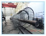 Scaletta della struttura d'acciaio per la strumentazione della gru di montaggio