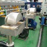 판매를 위한 알갱이로 만드는 기계 선을 합성하는 평행한 쌍둥이 나사