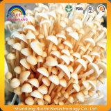 Extrait de champignons de couche d'Enokitake