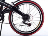 Bester Preis  20inch 8 Speed Faltendes Fahrrad-faltendes Fahrrad