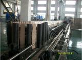 Esterilizador de botella del sistema de embalaje/máquina de llenado de bebidas