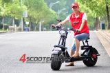 De Elektrische Autoped van Citycoco voor Verkoop met Ce