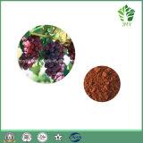 Jmy 100%の自然なブドウの皮のエキス5% Resveratrolの25%のポリフェノール; 20:1への4:1