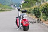 販売のための1500W移動性のスクーターのリチウム電池のCitycocoの電気スクーター