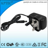 Spina standard dell'adattatore 9V/1A di CA con il piccolo prodotto dell'elettrodomestico
