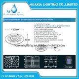 36watt 316 indicatore luminoso della fontana dell'acciaio inossidabile LED