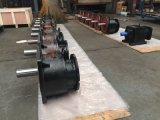 Inline-Welle mit Flansch-schraubenartigem Getriebe
