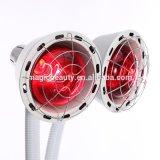 275W 2 têtes de lampe de physiothérapie de cure de peinture à infrarouge à ondes courtes