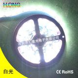 12W 2835의 칩을%s 가진 빛 5 미터 LED 지구