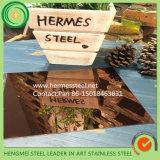 Colore 304 del SUS 201 che incide lo strato decorativo dell'acciaio inossidabile per l'acciaio inossidabile di colore