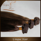 毛の拡張のRemyヨーロッパのクリップ