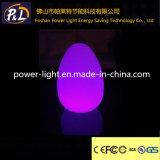 Lichte LEIDENE van het Ei van het Gebruik van de staaf Veelkleurige Decoratieve Schemerlamp