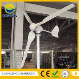 2000W 바람 터빈 바람 선반 바람 발전기