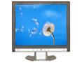 "Monitor LCD 19"" (CP-191)"