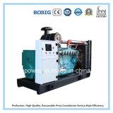 Gerador de gás metano de biogás Generator