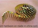 De gegalvaniseerde Spijker van de Rol van de Draad voor Bouw, Decoratie, Verpakking