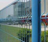 Reticolato di piegamento della rete fissa del triangolo rivestito verde del PVC