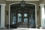 Дверь входа ковки чугуна изготовленный на заказ внешняя для виллы
