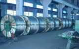 Conduttore nudo ACSR di potere ambientale di alluminio AAAC