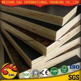 la película de la construcción de 18m m hizo frente a la madera contrachapada fenólica del álamo del pegamento del grado marina de la madera contrachapada