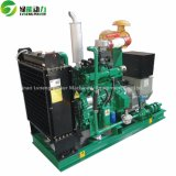 gruppo elettrogeno di /LPG del piccolo gas naturale 20kVA-25kVA/biogas/biomassa