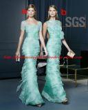 Verde menta Bateau escote con Cap Sleeve Sheer Lace Prom largo vestido corsé de SGS Bridesmaid Dress (GDNY106)