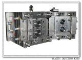 Moulage par injection en plastique professionnel de haute précision de la Chine (WBM-2013013)