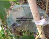 反昆虫の純袋のプラスチック純袋