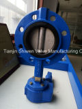 Individual Flanged Monoflange Butterfly Valve with CF8 Disc